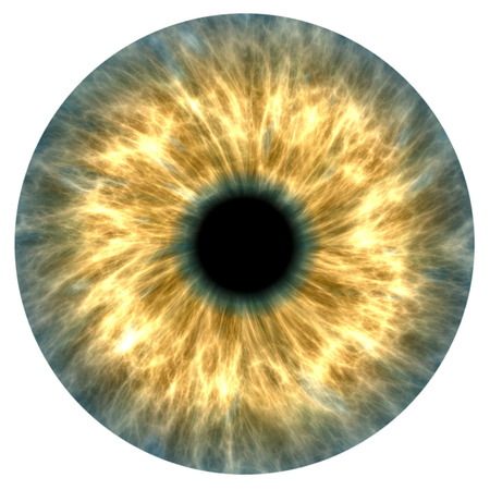 Illustration of a yellow and grey human iris Stockfoto