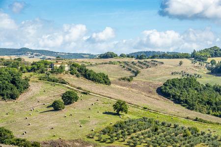 volterra: Typical landscape Tuscany near Volterra, Italy