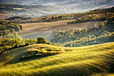 volterra: Landscape with hills, cypresses, trees in Tuscany, Italy at sunset