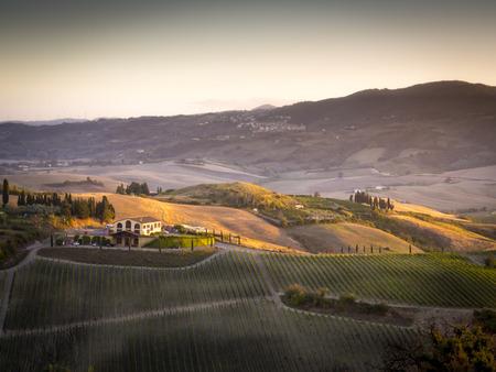 Landscape near Pienza, Tuscany Italy at sunset Stock Photo - 24946145