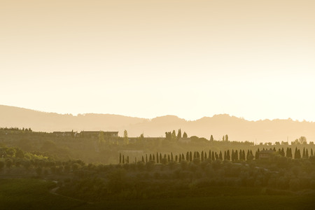 Landscape of Tuscany with hills, cypresses and houses at sunset photo
