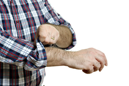 his shirt sleeves: Man in a plaid shirt rolls up his sleeves, isolated on white background
