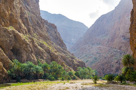 Image of Wadi Shab in Oman with rocks and palms at sunset
