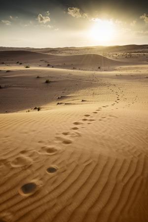 オマーンでの Wahiba の砂漠での夕日 写真素材