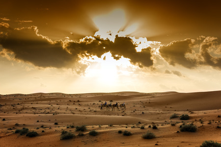 Sunset in desert Wahiba in Oman with riding tourist group on camels photo