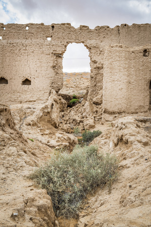 Ancient buildings in oasis Al Haway in Oman photo