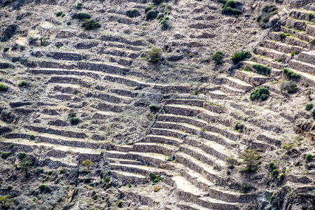 fractures: Image of landscape Saiq Plateau and terrace cultivation in Oman