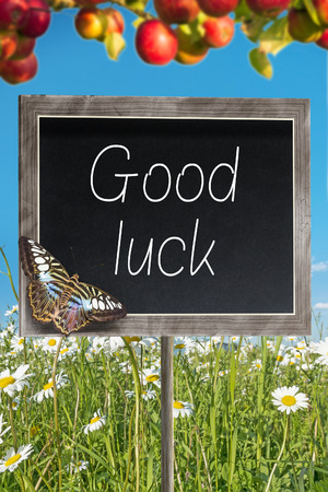 Blank chalkboard on a meadow with text Good luck photo
