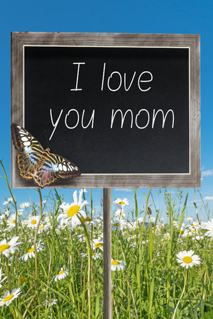 margarite: Blank chalkboard on a meadow with text I love you mom
