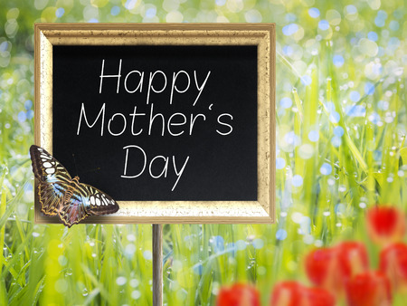 margarite: Blank chalkboard on a meadow with text Happy Mothers Day Stock Photo