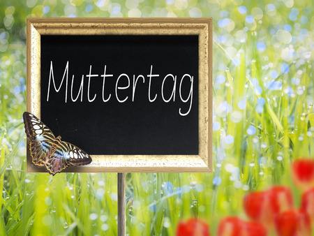 margarite: Blank chalkboard on a meadow with German text Mother