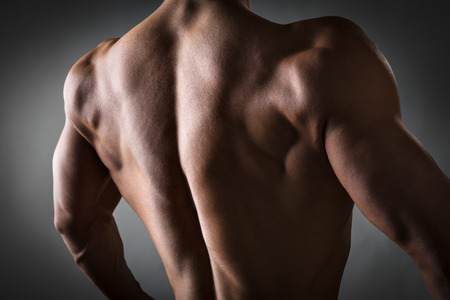 lats: Back of a young man with well trained body, triceps, lats and rhomboid muscle