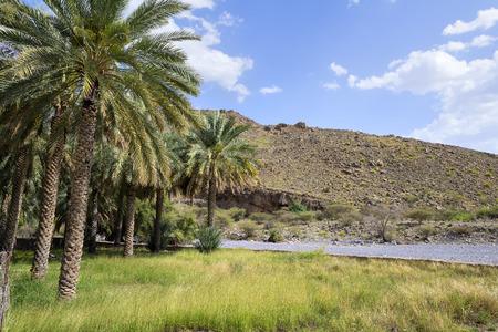 Landschap in de buurt Nizwa in Oman, Midden-Oosten Stockfoto