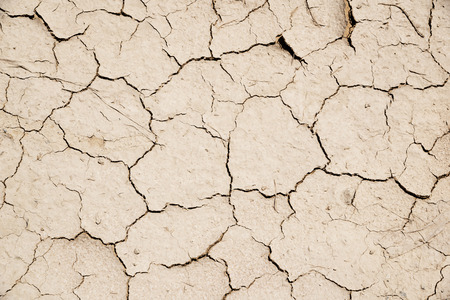 oman background: Parched earth in middle east Oman for abstract background texture
