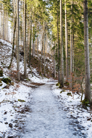 frozen lake: Frozen path at lake Weissensee in Bavaria, Germany in winter