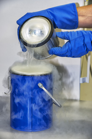 laboratorio: Persona en un laboratorio de química trabaja con nitrógeno líquido Foto de archivo