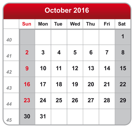 calendar october: Vector illustration of calendar October 2016