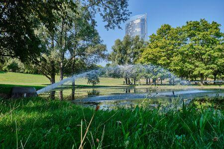 Image of landscape named Rheinaue in Bonn, Germany in summer Stock Photo