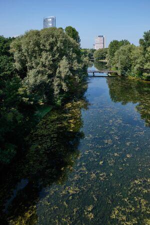 Image of landscape named Rheinaue in Bonn, Germany in summer Imagens