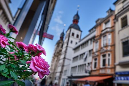 Image of flowers with houses in background in Bonn, Germany in summer