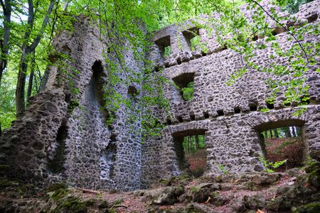 Image of castle ruin on the mountain Nerother head in Eifel, Germany in summer