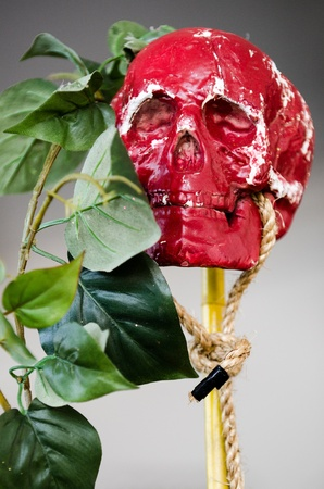 Photo of a red voodoo skull next to a branch with green leaves on it  Stock Photo