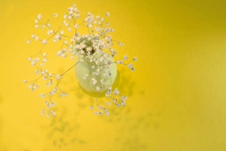 small flowers in a green vase on a bright yellow background