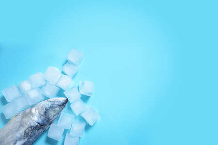 carcasses of raw mackerel on ice on a light blue background with ice cubes Top view with space for text