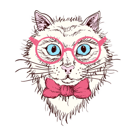 cat's eye glasses: Hand drawn portrait of a cat  in glasses. Vector illustration