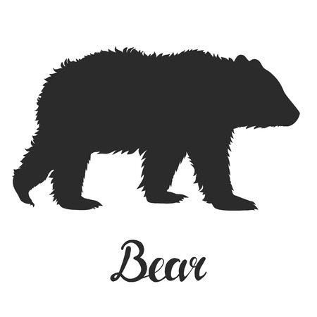 paw paw: Silhouette bear on white background. Vector illustration