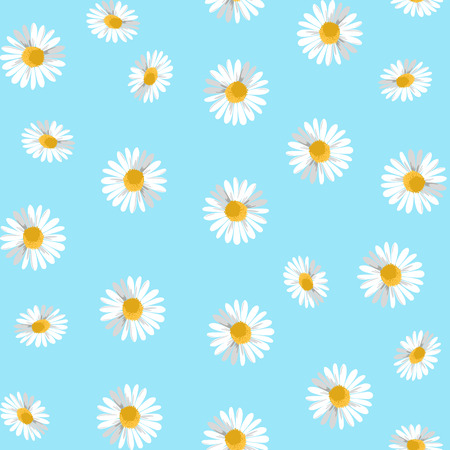 camomiles: Seamless pattern with camomiles. Vector Illustration