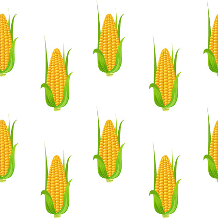 Seamless pattern with corn. Vector illustration