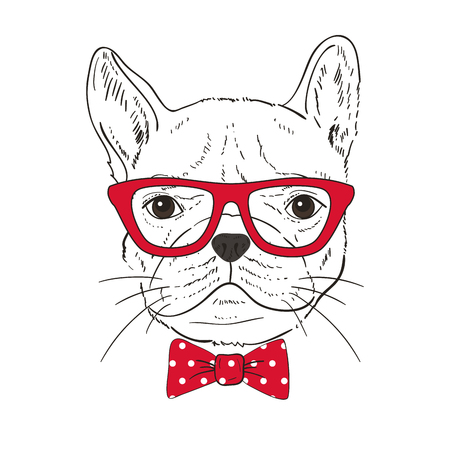 French Bulldog  hand-drawn poster. Vector illustration Ilustracja