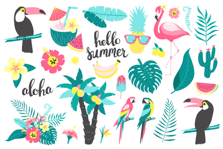 Summer set of design elements tropical leaves, flowers, fruits, flamingos, toucan, parrot. Vector illustration  Vectores