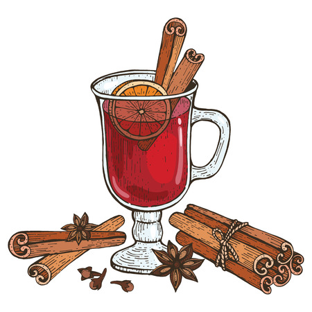 Glass of Mulled wine and spices cinnamon, cloves, badyan, orange. Hand-drawn vector illustration.