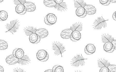 Seamless pattern with coconuts and palm leaves. Hand drawn vector illustration