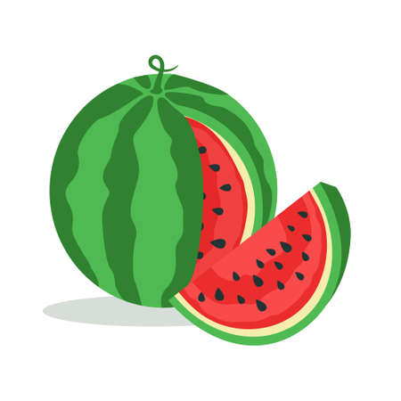 Watermelon and juicy watermelon slice isolated on white background. Vector illustration 矢量图像