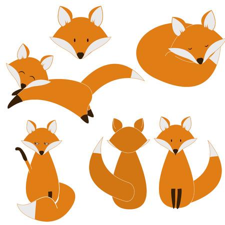Foxes vector set