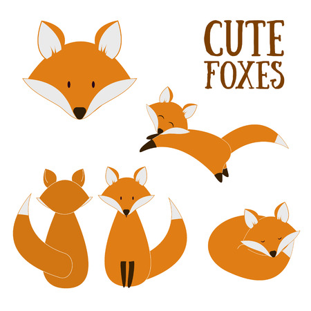 Set of cute foxes. Vector cartoon fox isolated on white. Sitting, sleeping, jumping fox. Flat design illustration.