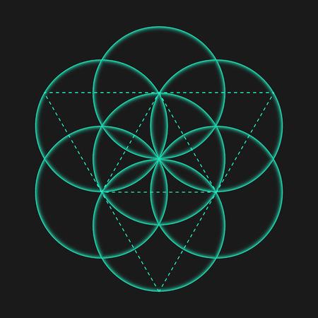 생명의 꽃 기호입니다. 벡터 격리 기하학적 상징 생명의 꽃입니다. 동그라미와 생명의 상징의 꽃. Metatron의 큐브 신성한 형상 글리프 - 생명의 꽃. 거룩