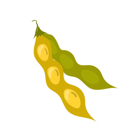 Soy bean pod vector icon. Unhealthy eating cartoon illustration isolated on white background Illustration