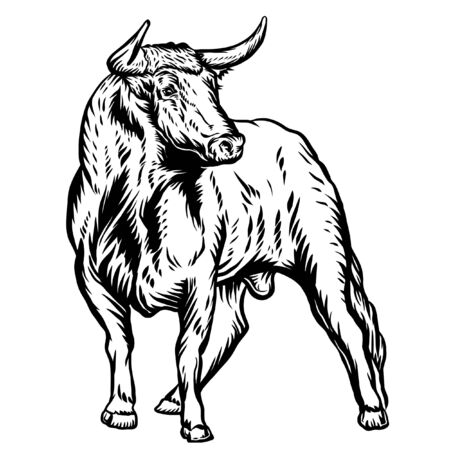 Bull. Vector illustration. Vector logo.