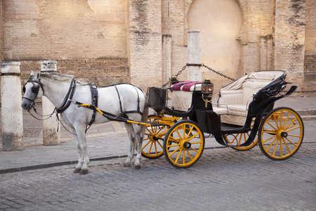 sevilla: Traditionele paard en wagen in de voorkant van de kathedraal Santa Mara de la Sede in Sevilla, Andalusië, Spanje. Stockfoto