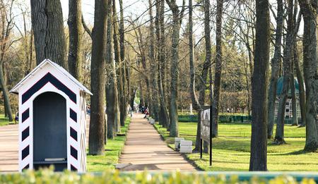 peterhof: Lower Park in Peterhof