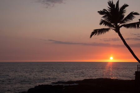 Colorful sunset shot with long exposure of a palm tree and the Pacific Ocean in Kona, Hawaii