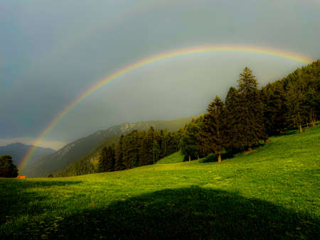 Rainbow in summer over a forest and a meadow in the swiss alps Stockfoto