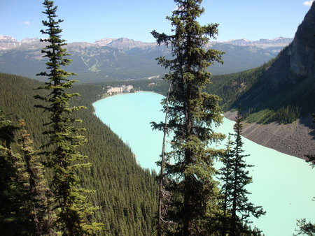 Lake Louise in Canada on a sunny summer day with a lot of forest in the background