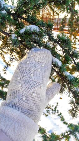 In the mitten, she touches the fir-tree on which the snow lies, glimpses of the sun