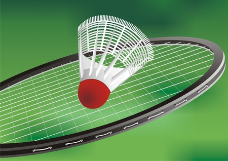 touchdown: badminton racket and flounce Illustration