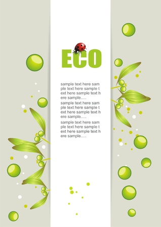 Bio concept design eco friendly for summer floral banner Stock Vector - 10042395